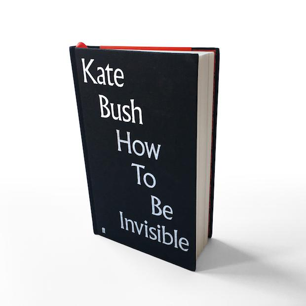 How To Be Invisible Selected Lyrics Out Now Kate Bush