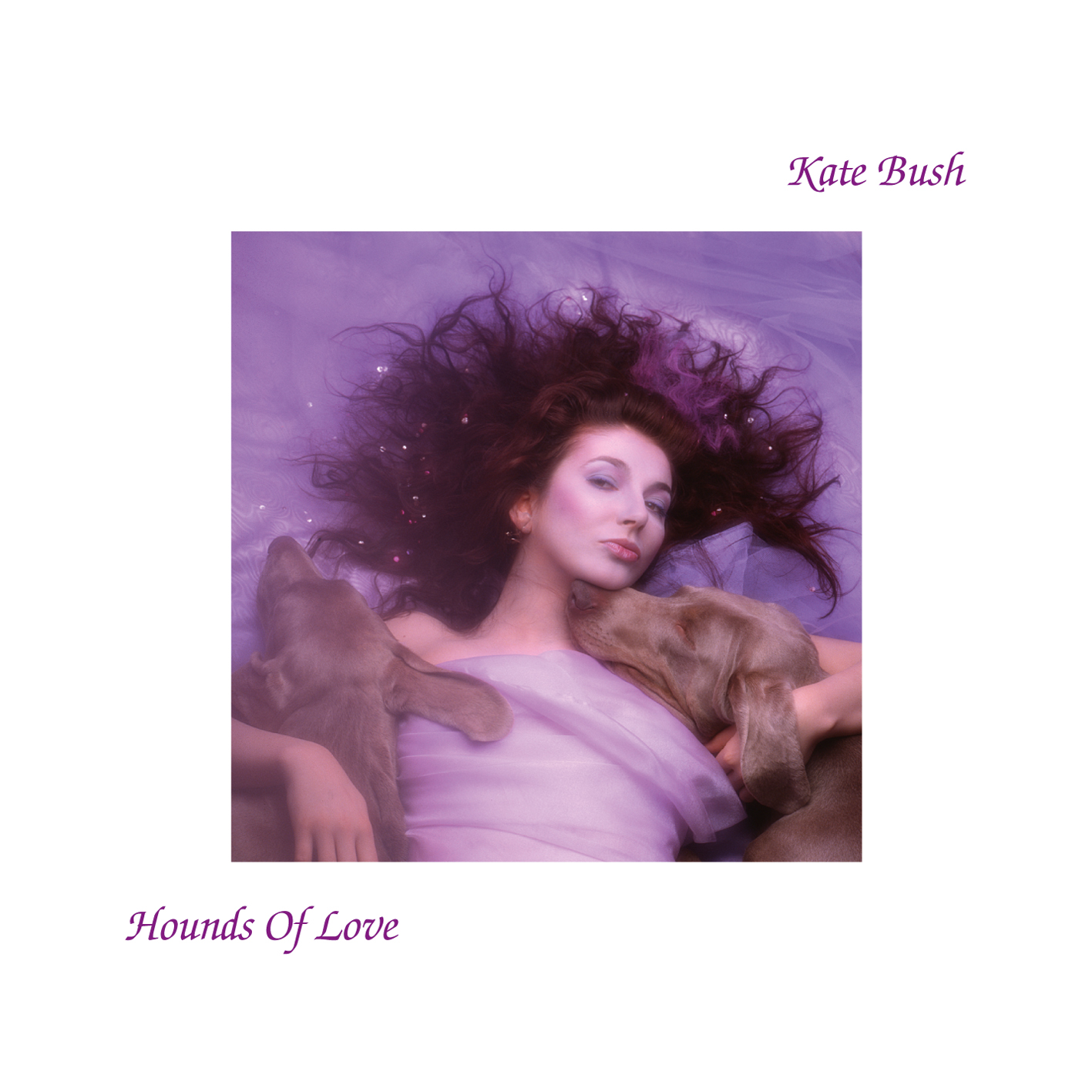 Hounds of Love - album cover